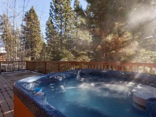 Three Pines Tahoe Vacation Rental - Hot Tub - Nevada vacation rentals
