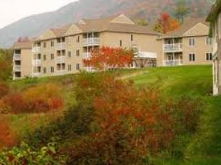 Vacation Village in the Bershires! 5 STAR resort! Sept. 27- Oct.4 Only $399 for the week! - Hancock vacation rentals