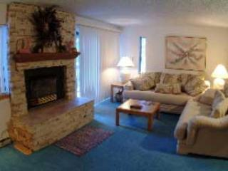 1 Bedroom, 2 Bathroom House in Breckenridge  (10A1) - Breckenridge vacation rentals