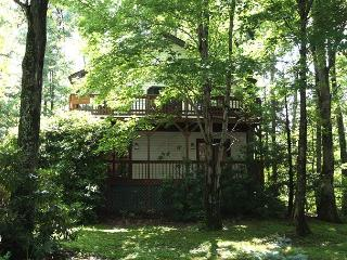Appalachian Dream great retreat minutes from the slopes at Appalachian - Blowing Rock vacation rentals