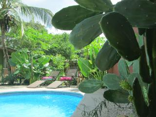 Oceanside Villa - Playa Potrero vacation rentals