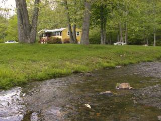 Yellow Cottage - Azalea Suite on 300 acres - Spruce Pine vacation rentals
