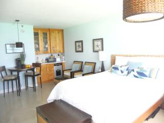 Modern  Studio 801 Ocean View - Miami Beach vacation rentals