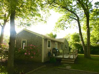 Cozy Cottage - Easy Walk to Town and Beach - Hamptons vacation rentals