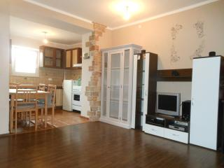 Two-Bedroom Apartment with Terrace Silvana - Basanija vacation rentals