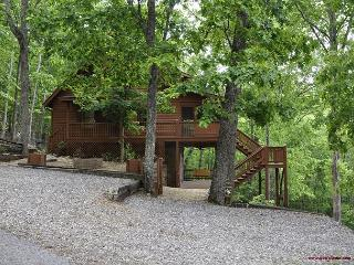 Are you looking for the perfect place to enjoy your family vacation? - Blairsville vacation rentals