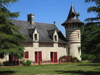 b&b  with swiming pool near loire valley - Brion vacation rentals