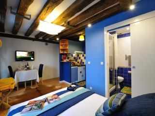 Marais/Attractive studio in the heart of Paris #BLUE LAGOON - Paris vacation rentals