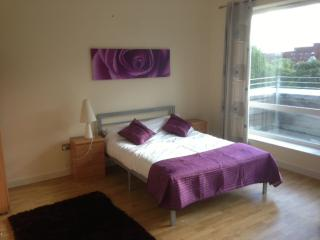 Penthouse Apartment with city views - Manchester vacation rentals