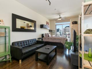 Iron and Wood Studio in Heart of Downtown! - Austin vacation rentals