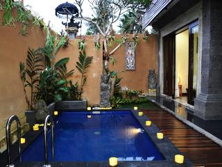 Ubud Villa Simbar-- Budget 3BDR Private Pool Villa - Ubud vacation rentals