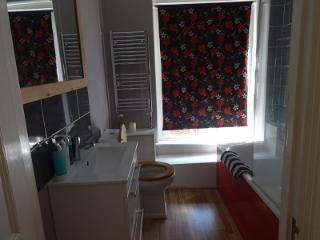 Self-contained flat in the centre of Winchester - Winchester vacation rentals