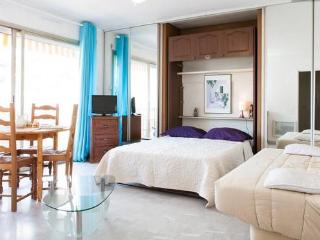 A spacious Studio near Cannes - Mandelieu La Napoule vacation rentals