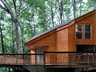 Cozy Hidden 1 Bedroom Cabin Just 5 Minutes Away from Downtown Gatlinburg - Sevierville vacation rentals