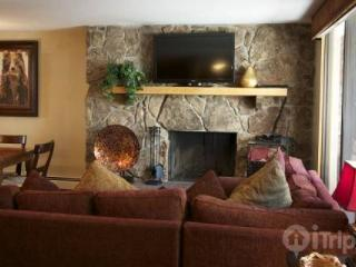 Scorpio 206 - Northwest Colorado vacation rentals