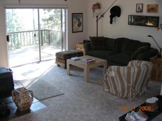Mountain View Winer and Summer  Cabin - Dodge Ridge Ski Resort-Pinecrest, CA - Cold Springs vacation rentals