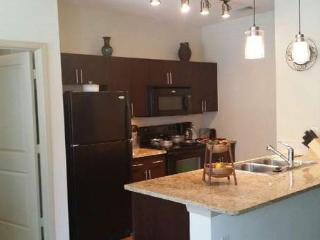 Great 1 BD in Greater Heights2MD39901127 - Houston vacation rentals