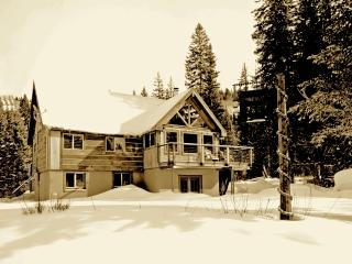 Ski in, Ski out Luxury cabin - Brighton vacation rentals