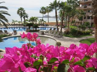 Beach front Condo in Paradise - San Jose Del Cabo vacation rentals