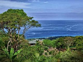 Holualoa Beauty! Exquisite Estate! Ocean Views! - Holualoa vacation rentals