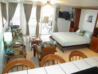 BEACHFRONT-Unobstructed View-Just REMODELED- $125+ - North Shore vacation rentals