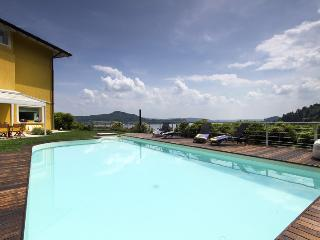 Splendid villa with pool overlooking the lake! - Piedmont vacation rentals