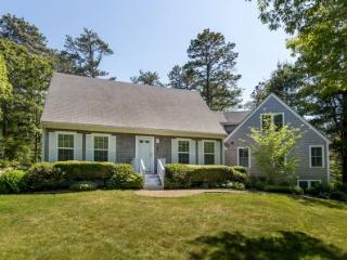 CONTEMPORARY CAPE IN DODGER'S HOLE - EDG ELAN-20 - Edgartown vacation rentals