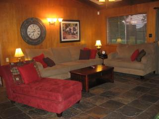 Large Ranch Style Home On Over An Acre In Round Rock. Pool, Hot Tub, Game Room! - Round Rock vacation rentals