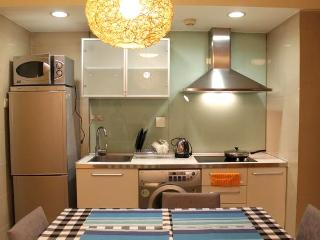 Fashion1Br next byDawanglu station,superlocation - Beijing Region vacation rentals