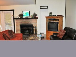 357 Laurelwoods~At Big Boulder Lake & Ski Area - Lake Harmony vacation rentals