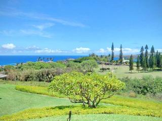 Sweet trade winds and awesome ocean views, Kapalua - Kapalua vacation rentals