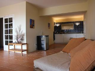Private Appartment  with Oceanview  Willemstad  Curacao - Curacao vacation rentals