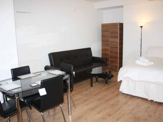 INV1 - Basement Family Studio - London vacation rentals
