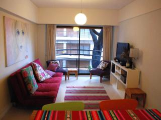 Amazing Apartment in Belgrano - Buenos Aires vacation rentals