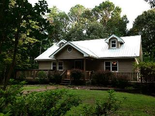 Ardwyn Cottage in the North Georgia Mountains! - Dahlonega vacation rentals