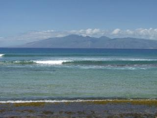 Absolute Best Condo in the Complex! - Lahaina vacation rentals