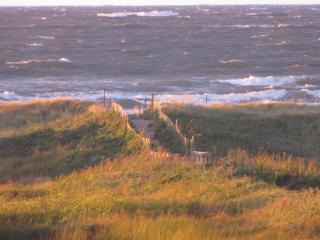Full Ocean View - New Brunswick vacation rentals
