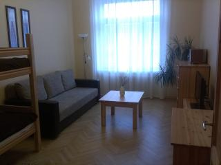 Apartment Terbata 85-5 City Center - Riga vacation rentals