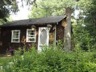Modern Cottage With Deck & Hot Tub in Rosendale - Hudson Valley vacation rentals
