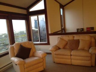 Monterey Beachfront, Oceanfront Breath Taking Views, 100 feet to ocean, Wakeup and fall asleep to sound of Water!! - Moss Landing vacation rentals