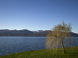 Lake Maggiore Ispra lakefront villa with garden - Ispra vacation rentals