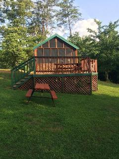 Deluxe Cabin with Fireplace in Smoky Mountains - Whittier vacation rentals