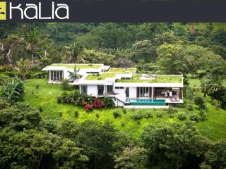 Kalia Modern Eco-Living - Guanacaste vacation rentals