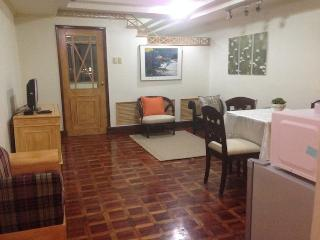 BSA MANSION - Makati vacation rentals