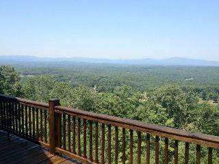 Bearly Roughing It - Mineral Bluff - North Georgia Mountains vacation rentals