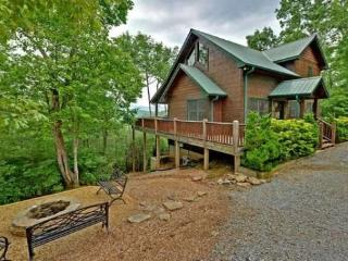 My Mountain Dream - Mineral Bluff - North Georgia Mountains vacation rentals