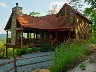 Above It All - Aska Adventure Area - North Georgia Mountains vacation rentals