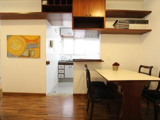 Afonso SP 42 - Sao Paulo vacation rentals