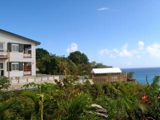 Harbor View Apartments - Your home stay on Sint Eustatius, The historical Gem in the Caribbean! - Saint Eustatius vacation rentals