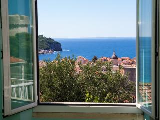 APARTMENT GLICINIA DUBROVNIK CENTER - Dubrovnik vacation rentals
